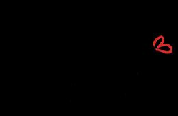 befluegelnd_von_vector_logo_600x426